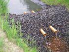 Damm zum lokalen Eisenrückhalt in einem Drängraben